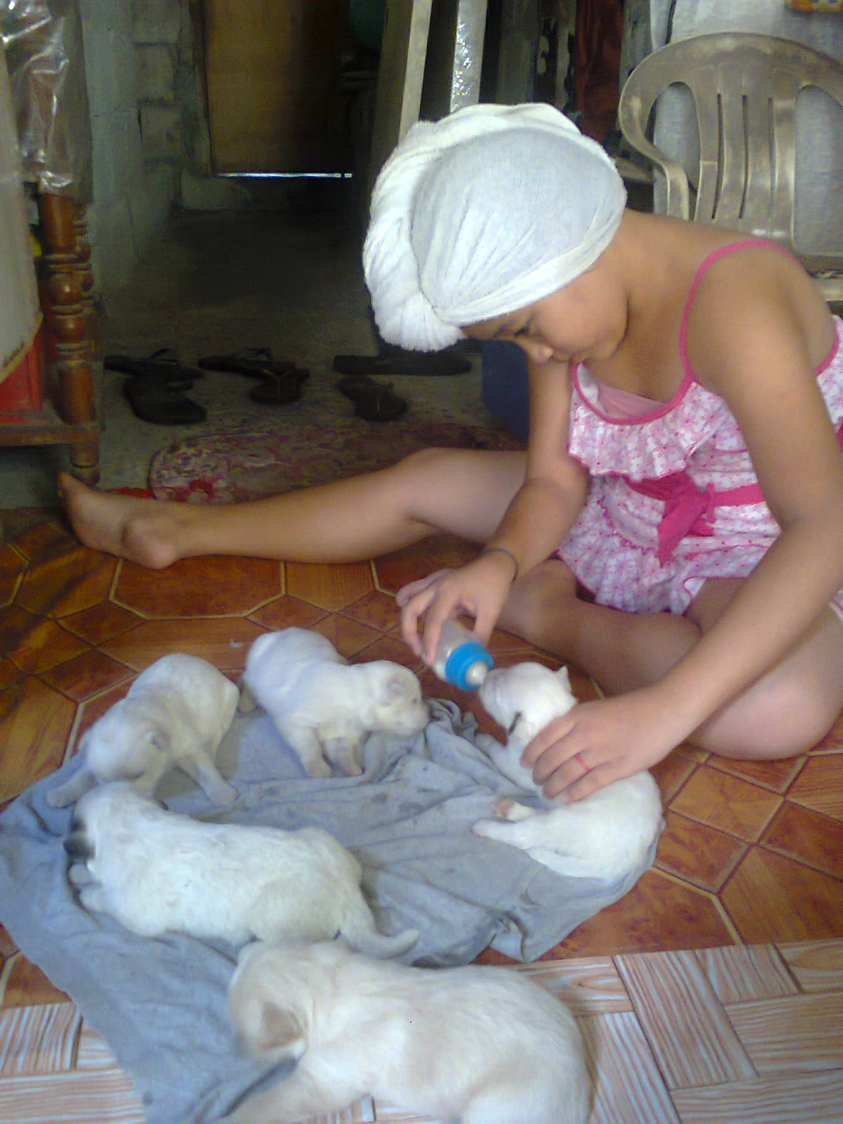 Marxi feeds the puppies. :)